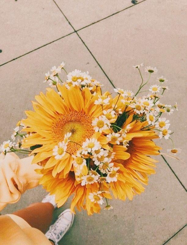Mơ thấy bông hoa màu vàng