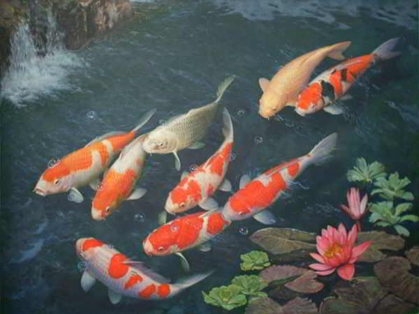 mo-thay-ca-thuong-la-diem-bao-lanh-hay-du-lien-quan-den-con-so-nao-9669538