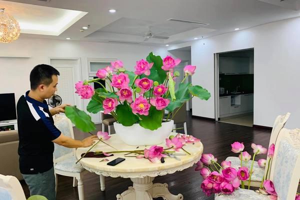 Mơ thấy hoa sen trong nhà