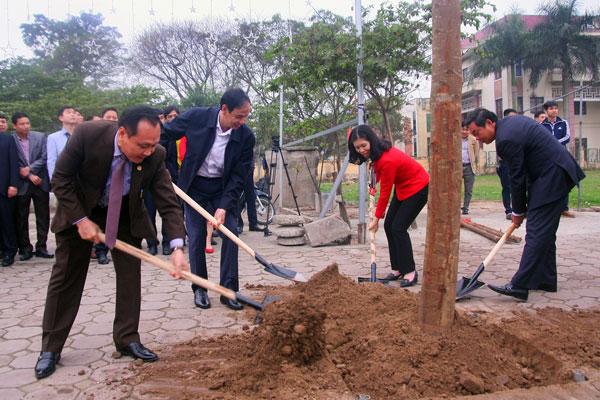 Nằm mơ thấy người khác trồng cây