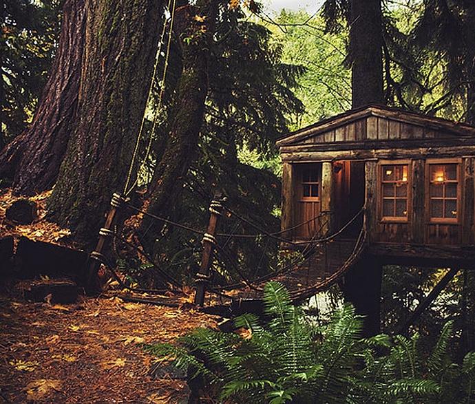 Mơ thấy căn nhà cũ kỹ trong rừng