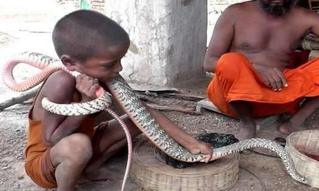 Mơ thấy rắn quấn