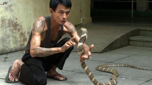 Nằm mơ thấy rắn cắn người nhưng không cắn được