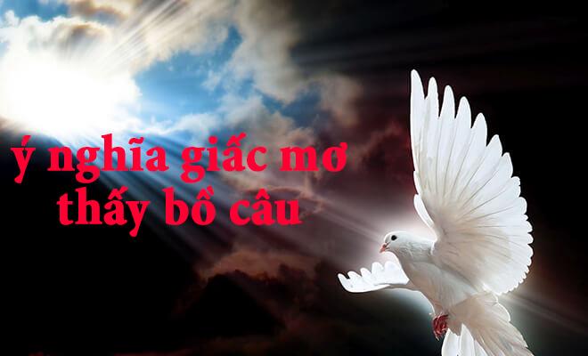 Giải mã ý nghĩa giấc mơ thấy chim bồ câu